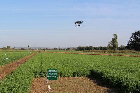 Phenotyping sensors on Unmanned Aerial Vehicles